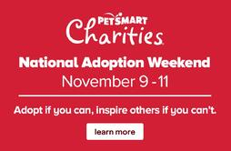 National Adoption Weekend-1