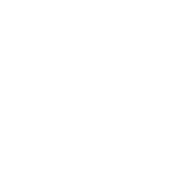 shield-icon.png